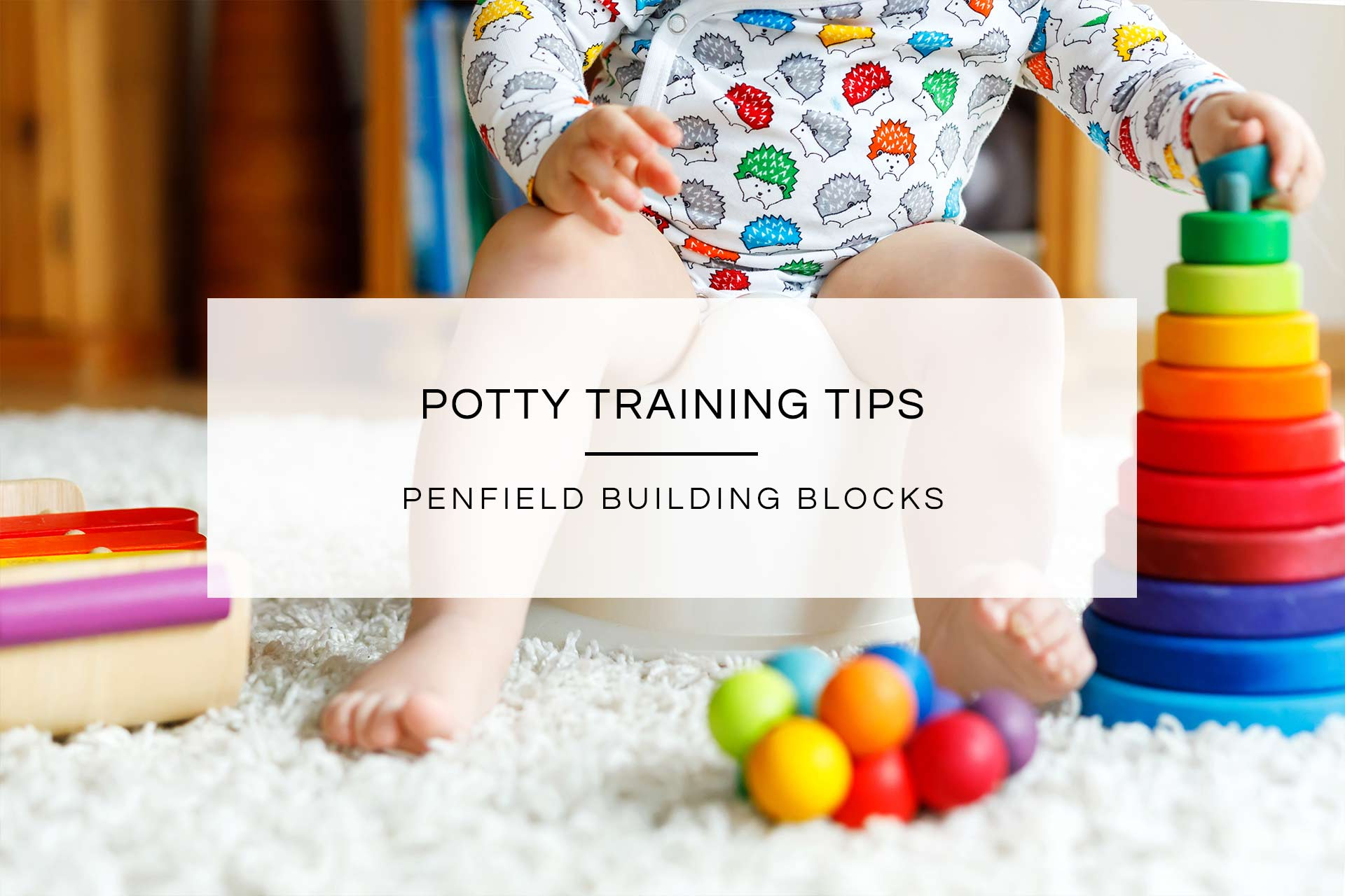 Potty Training Tips | Penfield Building Blocks