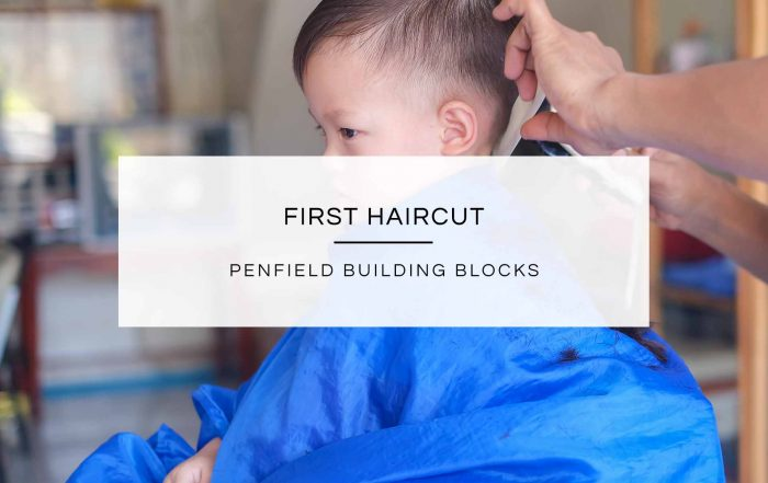 First Haircut | Penfield Building Blocks