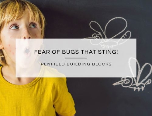 Fear of Bugs that Sting!