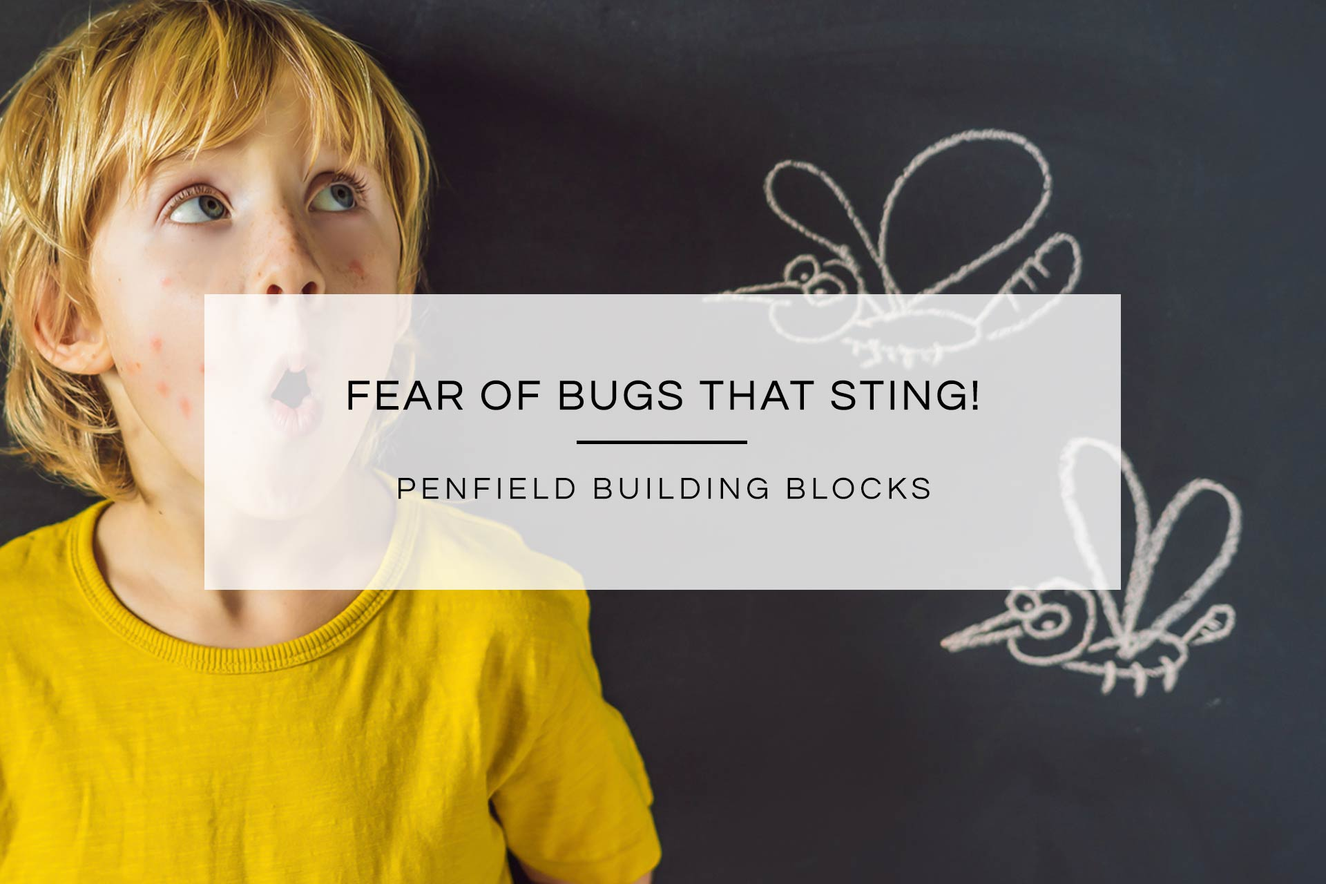 Fear of Bugs that Sting! | Penfield Building Blocks