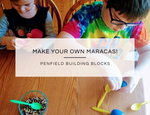 Make Your Own Maracas!